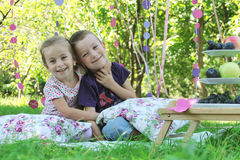 Sister and brother having fun on picnic Royalty Free Stock Photo