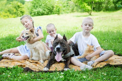 Sister and brother playing with a dogs and a cat Royalty Free Stock Photography