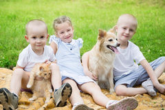 Sister and brothers with a dog and a cat Royalty Free Stock Photo