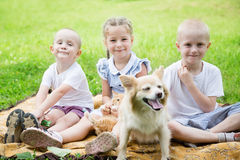 Sister with brothers playing with a cat and a dog Royalty Free Stock Photos