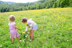 Sister girls in meadow playing with spring flowers Stock Images