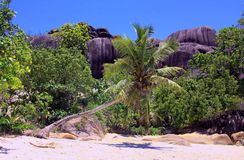 Sister Island, Seychelles. Sister Island is a private island on the Seychelles in the Indian ocean Royalty Free Stock Photos