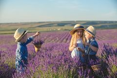 Three happy children in lavender field stock photos