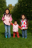 Sisters Apple Picking. As a family royalty free stock photo