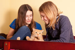 Sisters with cat Stock Image