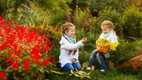 Sisters collect fallen leaves and mushrooms. Royalty Free Stock Image
