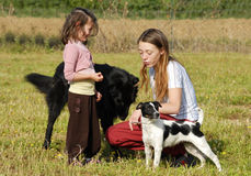 Sisters and dogs. Two sisters in a field with their dogs stock photography
