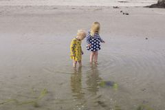 Sisters explore the natural world together. royalty free stock photos