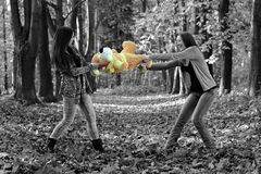 Sisters fighting for the plush toy in the autumn park Royalty Free Stock Photo