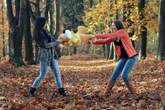 Sisters fighting for the plush toy in the autumn park Royalty Free Stock Images