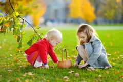 Sisters gathering acorns for crafting and playing Royalty Free Stock Photos