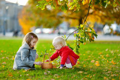 Sisters gathering acorns for crafting and playing Stock Image