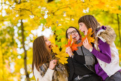 Sisters and maple leaves Stock Image
