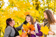 Sisters and maple leaves Royalty Free Stock Image