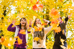 Sisters and maple leaves Stock Photography