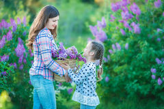 Sisters with mother playing in blooming lilac garden. Cute little girls with bunch of lilac in blossom. Kid enjoying happy childho Stock Photo