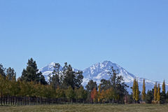 Sisters Mountains With Fall Color Trees Stock Photos