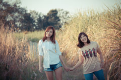 Sisters in nature Royalty Free Stock Images
