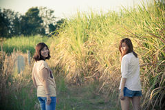 Sisters in nature Royalty Free Stock Photography