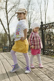 Sisters pose in front of the camera. Two sisters pose on the wooden bridge in park in the autumn royalty free stock image