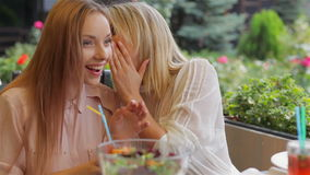 Sisters secrets. Sisters in the cafe convey the secrets of each other stock video