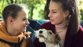 Sisters sitting in the park and spend the conversation. They laugh, gesticulate, speak. In the hands of one of the girls sitting dog stock footage