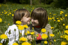Sisters on the spring meadow Stock Photography
