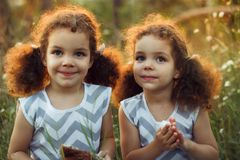 Sisters twin toddlers kissing and laughing in the summer outdoors. Curly cute girls. Friendship in childhood. Warm sunligh royalty free stock image