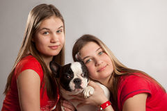 Sisters twins with bulldog Royalty Free Stock Images