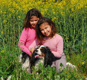 Sisters twins and dog Stock Photo