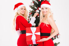 Sisters twins  holding present and decorating Christmas tree Stock Image