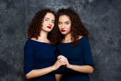 Sisters twins smiling winking looking at camera over grey background. Stock Image