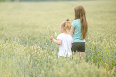 Sisters walking through field, picking flowers, backshot Royalty Free Stock Image