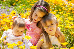 Sisters in Yellow Wildflowers. Three young girls sit close together in a Springtime field of yellow and orange African Daisies Stock Photography