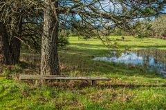 Sit a Spell and Ponder Quieter Times. An old bench waits for a passerby to sit and relax on a beautiful spring day near The Dalles, Oregon Royalty Free Stock Photos