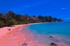 Sitapur strand på Neil Island Fotografering för Bildbyråer