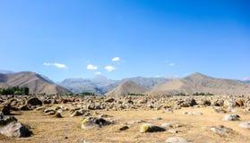 Site antique avec des pétroglyphes au Kirghizistan pendant l'été images libres de droits