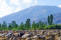 Site antique avec des pétroglyphes au Kirghizistan pendant l'été image libre de droits