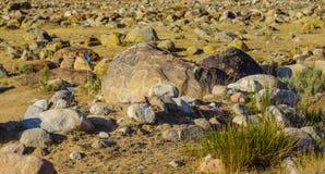 Site antique avec les pétroglyphes historiques au Kirghizistan photo libre de droits