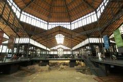 Site archéologique couvert photos libres de droits