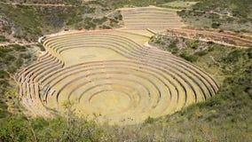 Site archéologique Cuzco Pérou de Moray banque de vidéos