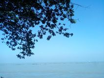 Site de rivière de Padma Images libres de droits