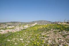 Site de Yodfat antique, monticule de Yodfat photo stock