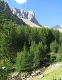 Site des colla der kleinen Ferse, Frankreich Lizenzfreies Stockfoto