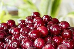 Cooking cherry jam.Wet deep red berries on a background of green leaves . royalty free stock image