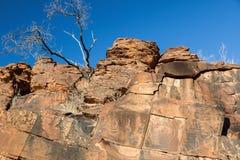 Site indigène de gravure de gorge de chambres. Chaînes de Flinders. Sud images libres de droits