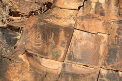 Site indigène de gravure de gorge de chambres. Flinders photographie stock libre de droits