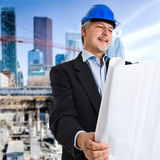 Site manager Stock Photography