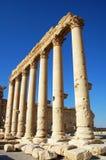 Site Of Palmyra Royalty Free Stock Image