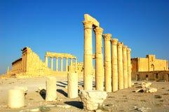 Site Of Palmyra Syria Stock Image